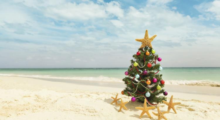 christmas-tree-beach