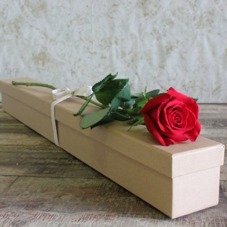 Struck by love single boxed red rose